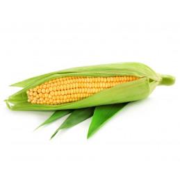 Kukurūzų burbuolė 1vnt