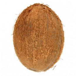 Kokosai 1vnt