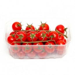 Pomidorai 500g, ant šakų,...