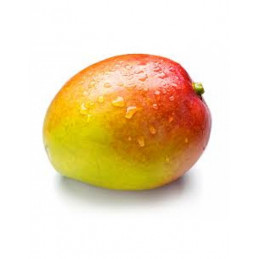 Mango 1vnt (14)